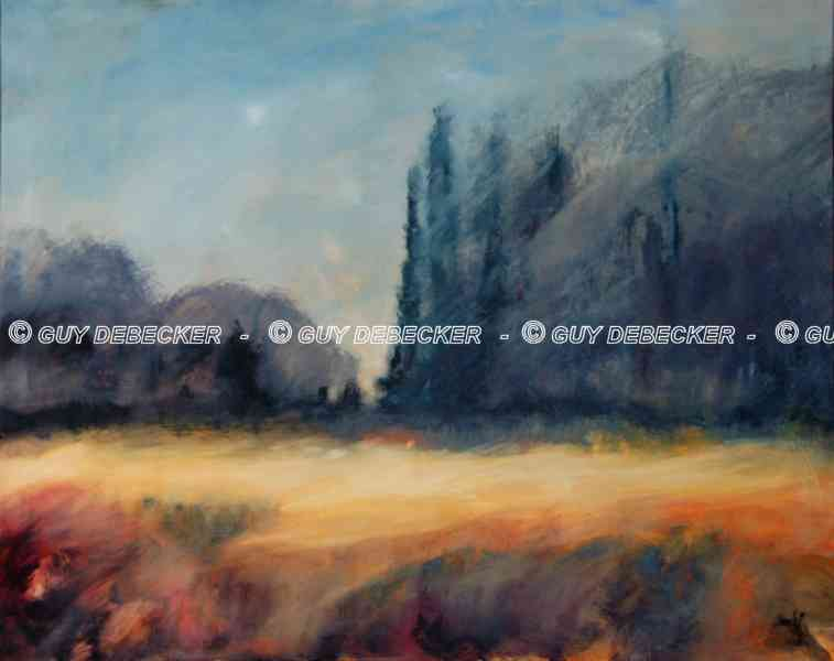 wh13-014-paysage-lauw-1-80x100